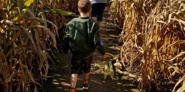 30 Ideas for Kid-Friendly Fall Fun